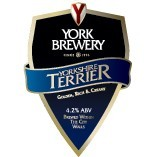 York - Yorkshire Terrier